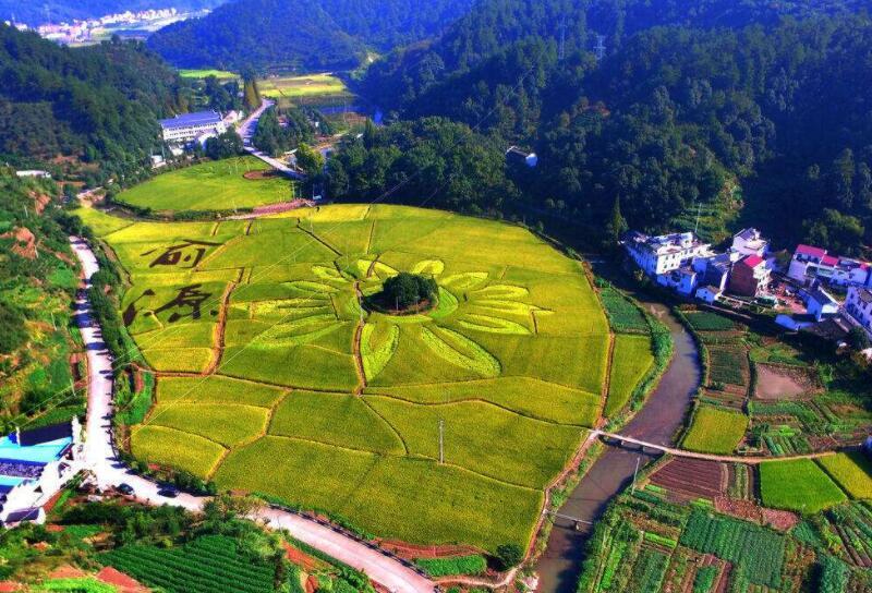 余欣荣:对弘扬农村改革精神推进乡村振兴的思考