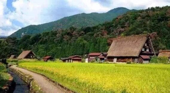 日本乡村振兴经验分享 八大农业项目案例分析