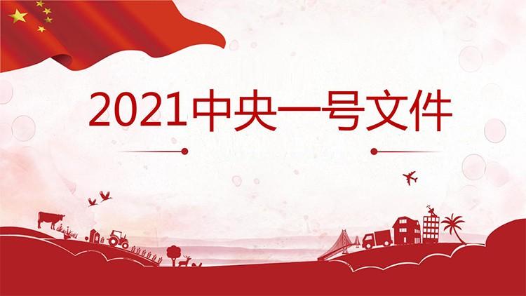 中央一号文件:中共中央 国务院关于全面推进乡村振兴加快农业农村现代化的意见