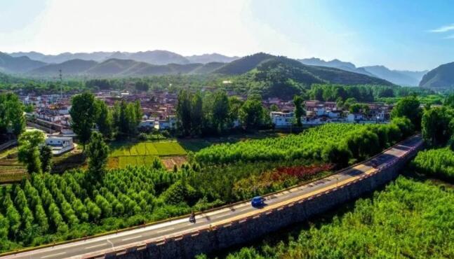 关于绿色金融助力乡村振兴的思考