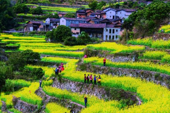 不可轻视都市农业的作用